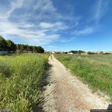 Campo de Albacete