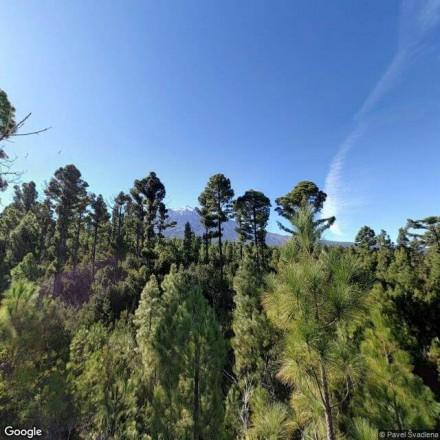 Entrada al Parque natural del Teide